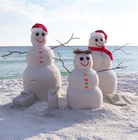 hristmas   beach pictures  facebook tropical christmas beach christmas coastal