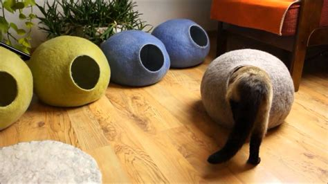 cat cave bed what is best cat cave youtube