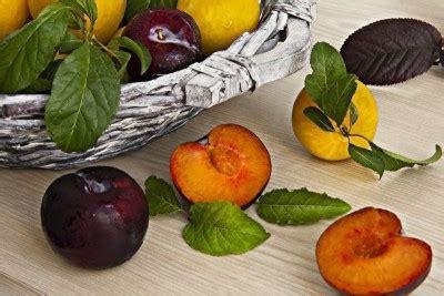alimentazione sana alimentazione sana o dieta equilibrata per bambini e donne