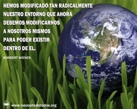 imagenes de reflexion del medio ambiente fel 237 z d 237 a del medio ambiente im 225 genes frases y
