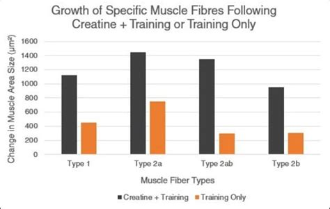 creatine age 10 graphs that show the immense power of creatine