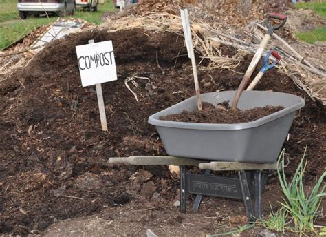 best backyard composter the perfect compost recipe how to get your compost heap