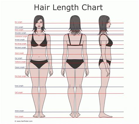 acceptable pubic hair length the inversion method grow an inch of hair in one week