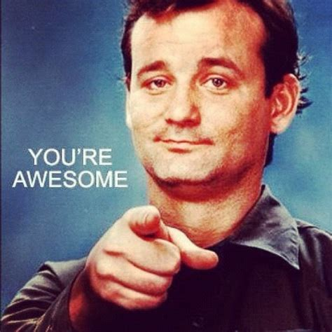 You Re Awesome Meme - you are awesome bill murray memes