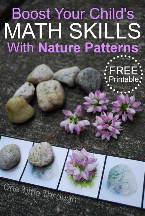 patterns in nature preschool free nature pattern printable