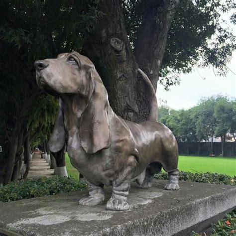 puppies for sale in marquette mi 1000 ideas about bloodhound puppies on bloodhound treeing walker