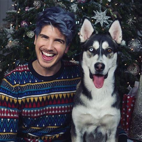 joey graceffa s dogs joey graceffa s wolf popsugar pets