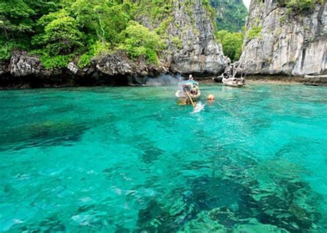 best speed boat tour to phi phi island phi phi island tours travel phi phi day tours speed