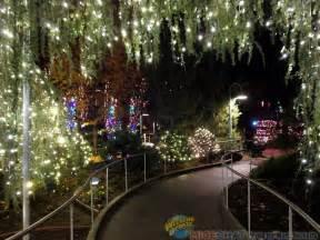lights sparkle at gilroy gardens