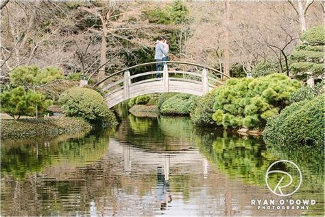Japanese Botanical Gardens Fort Worth David S Engagement Shoot Fort Worth Water Gardens Japanese Botanical Gardens