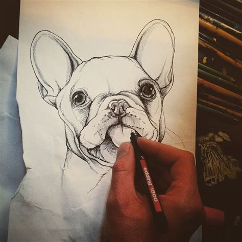 tattoo pen for dogs 242 best images about sketchbook by jeroen teunen on