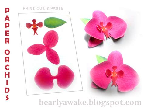 paper cutting card orchid template di s dilights make your own paper orchids