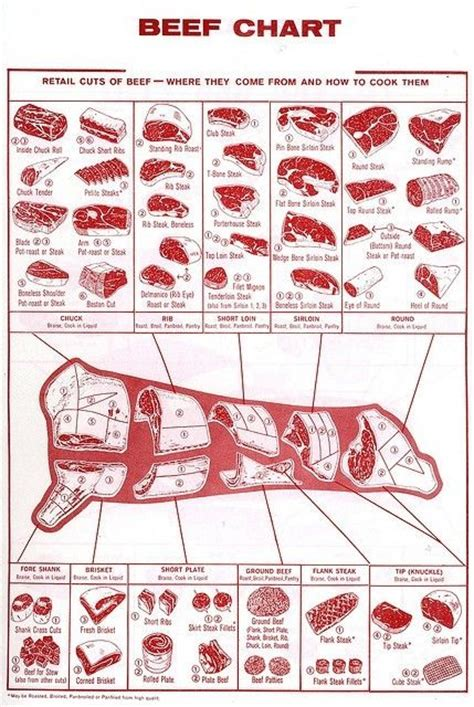 pork diagram poster beef chart of retail cuts by phyllis to