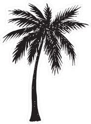 hand drawn palm tree silhouette sticker