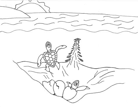 turtle eggs coloring page drawn sea turtle egg hatching pencil and in color drawn