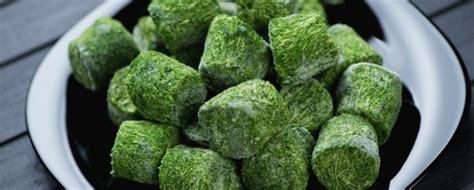 come cucinare spinaci cuocere spinaci surgelati