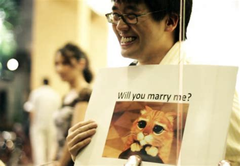Meme Wedding Proposal - 5 wedding proposal videos you have to watch hongkiat