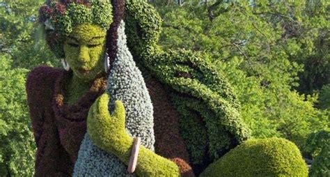 potatura piante da giardino siepi piante da giardino