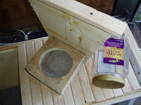 top bar beehive feeder feeding sugar syrup in a top bar hive top bar hive tips