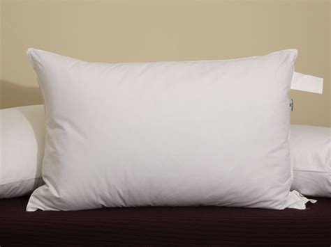 louisville bedding company pillow order your eco smart pillow todayfeatured by pacific pillows