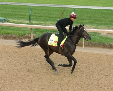 churchill at the gallop slideshow active sunday under twin spires for derby oaks
