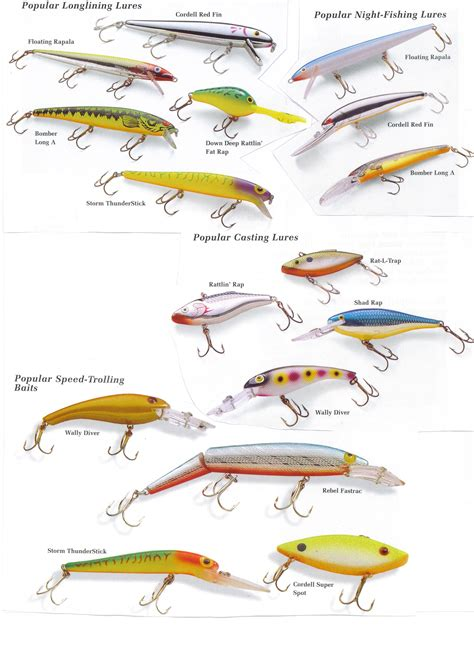 different types of bass fishing boats type of lures fishing bass fishing fish fishing lures