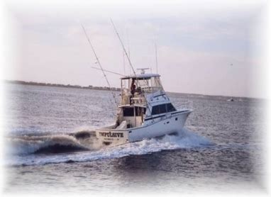 fishing boat for hire fishing charter boat for hire impulsive charters