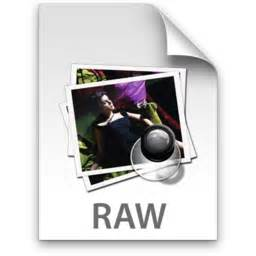 format file raw advantages and disadvantages of raw files technically easy