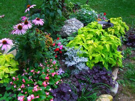 Perennial Flower Garden Design Plans Perennial Flower Garden Design Ideas Landscaping Gardening Ideas