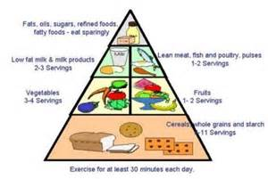 food guide pyramid for pregnant women food pyramid pinterest