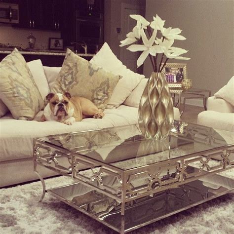 diaz s bulldog rocky looks regal relaxed on our