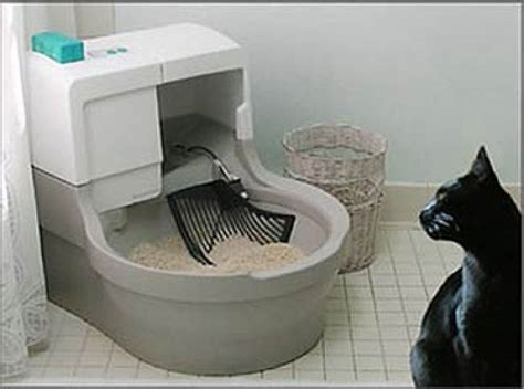 cat using bathroom outside litter box automated cat litter box cat genie hacked gadgets