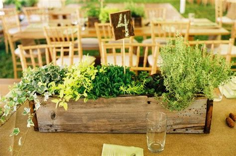 live centerpieces planter with living plants for table centerpiece rustic