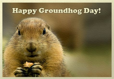 groundhog day name happy groundhog day everybody ign boards