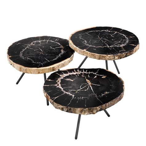 petrified wood coffee table de soto petrified wood coffee table set of 3