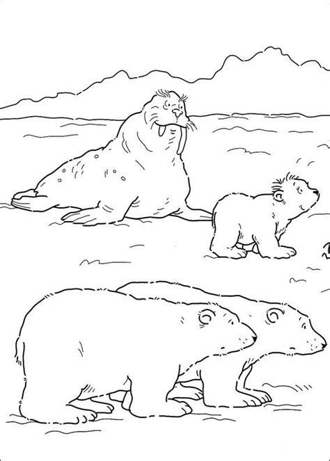 coloring pages of antarctic animals kleurplaten en zo 187 kleurplaat kleine ijsbeer