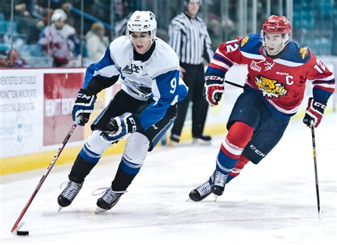 joe veleno les sea dogs ont 233 t 233 prudents avec joe veleno acadie