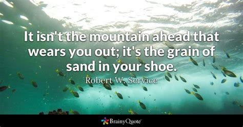 I Mentioned Earlier In The Week That I Would Write by Shoe Quotes Brainyquote