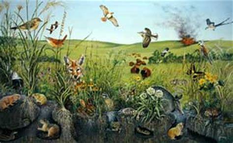 tpwd kids prairies  lakes wildlife