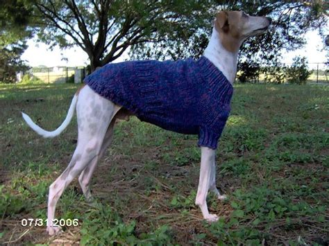 knitted greyhound sweater pattern 1000 images about greyhound sweaters on pinterest coats