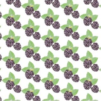 pattern download for blackberry blackberry vectors photos and psd files free download