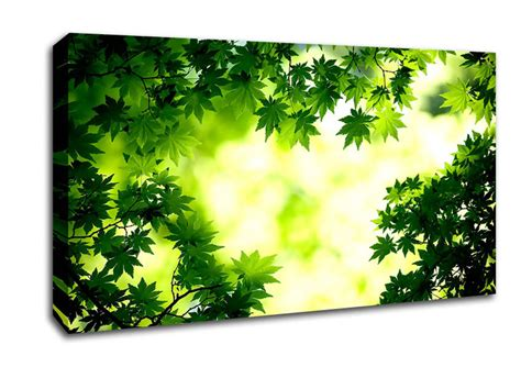 Wall Sticker Green Maple Leaves Ay 9145 Uk 60 Cm X 90 Cm green maple leaves flowers wide panel canvas wide canvas