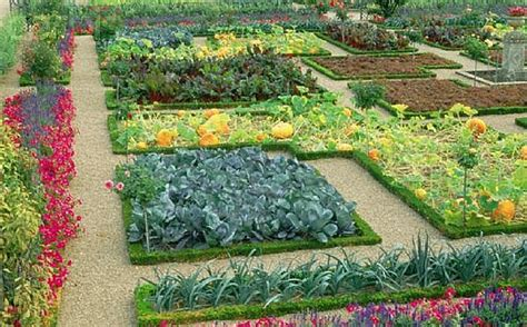 fruit and vegetable garden ideas how to grow a vegetable garden how to grow a vegetable