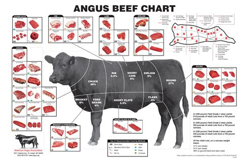 cuts of steak diagram what everybody ought to about beef cuts clover