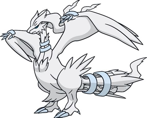 pokemon coloring pages reshiram pokemon reshiram coloring pages 194 image search results