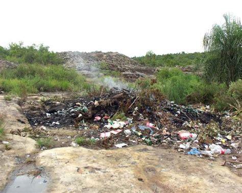 imagenes de hábitats naturales la destrucci 243 n de los habitats naturales jard 237 n urumb 233
