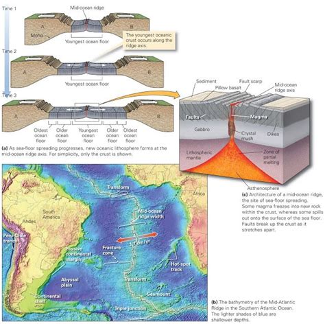 What Does Sea Floor Spreading by Divergent Plate Boundaries And Sea Floor Spreading Learning Geology Geology