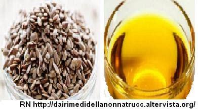semi di lino utilizzo in cucina olio di semi di lino propriet 224 e utilizzo
