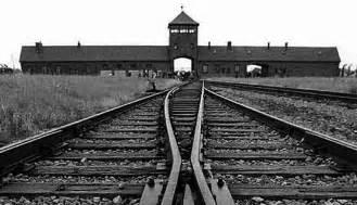 Arriv 233 e au camp de concentration d auschwitz