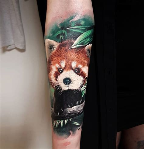 red panda tattoo panda realism best design ideas